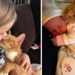 Bailey the cat cuddles with his human siblings